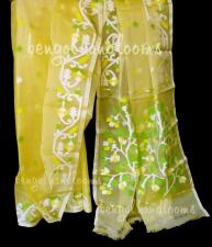 Pure silk muslin